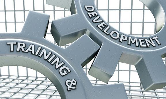 Training and Development gears